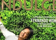 Miami Herald INDULGE: Professional Profile